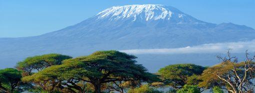 Kilimandżaro – wielka góra otoczona sawanną