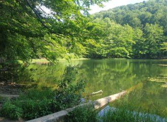 Jeziora Duszatyńskie –  Rezerwat Zwiezło