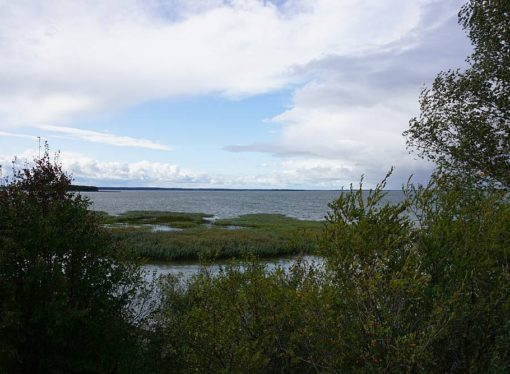 Półwysep Szeroki Ostrów nad jeziorem Śniardwy – Mazury