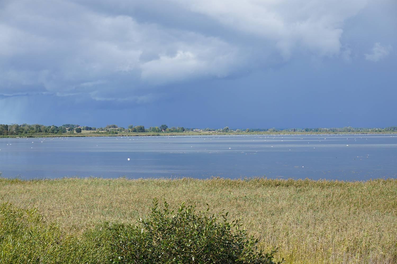 Punkt widokowy na Jezioro Łuknajno